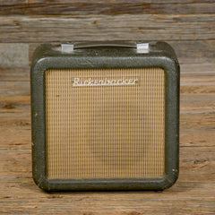 Rickenbacker Tube Amp USED