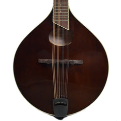 Breedlove Crossover OO Violin Stain Sitka-Maple Mandolin