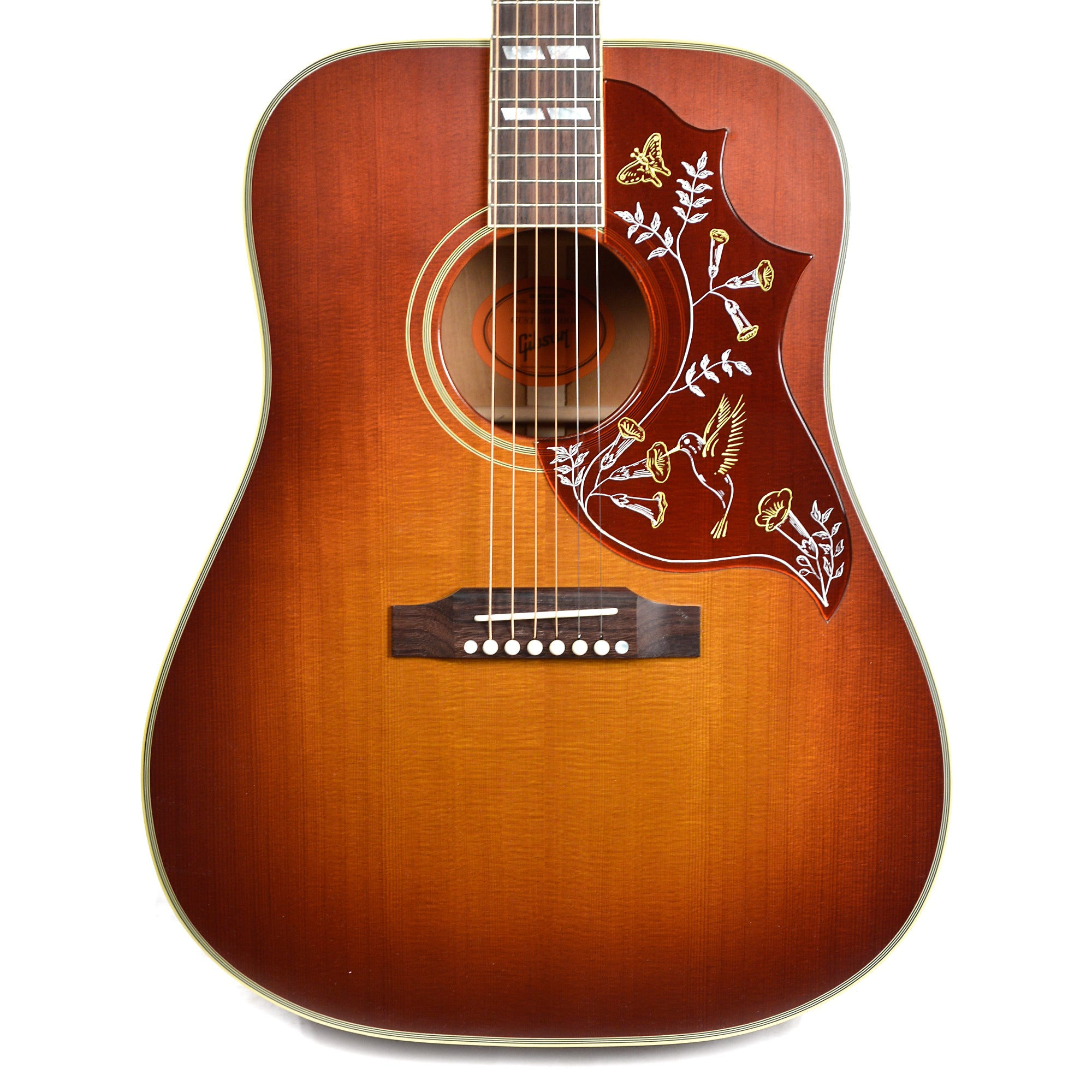 case hummingbird music v dino Questions about acoustic / electric guitars sweetwater's sales engineers are regarded as the most experienced and knowledgeable professionals in the music industry, with extensive music backgrounds and intense training on the latest products and technologies.