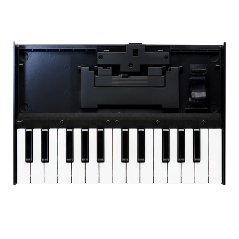 Roland Boutique K-25m Portable Keyboard