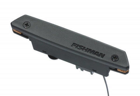 Fishman Rare Earth Humbucking Soundhole Pickup