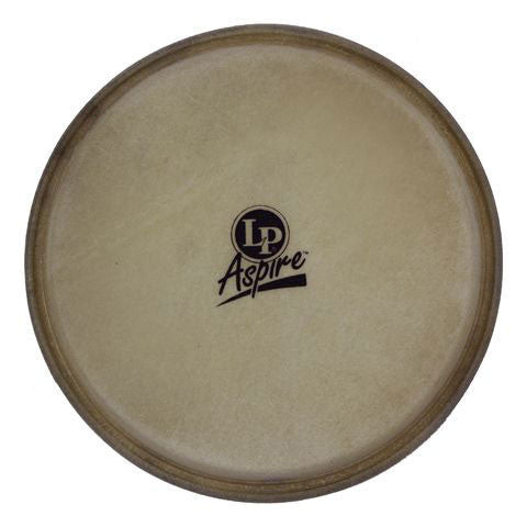 LP 10 Inch Aspire Rawhide Quinto Head
