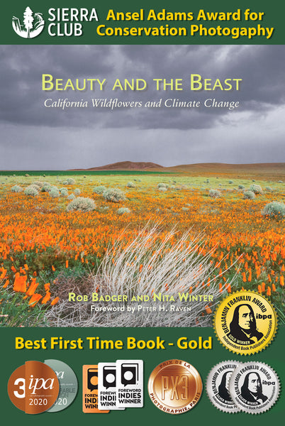 10 book award medals for Beauty and the Beast: California Wildflowers and Climate Change