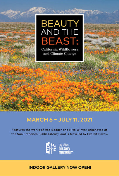 """Beauty and Beast: California's Wildflowers and Climate Change"" exhibit at the Los Alto History Museum. Part of Rob Badger and Nita Winter's fine art documentary photography project ""Beauty and Beast: Wildflowers and Climate Change"""
