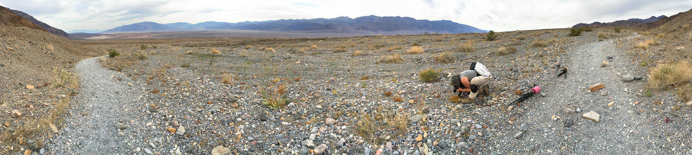 Nita Winter photographing wildflowers in Death Valley