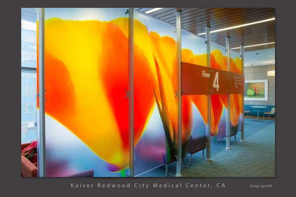 8' x 20' Hospital lobby divider with giant California Poppies by Rob Badger