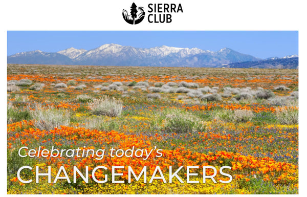Sierra Club's Awards Antelope Valley Poppy  Reserve by Rob Badger