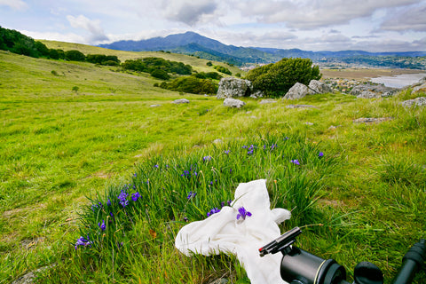 Set up to photograph ground iris wrapped in chiffon, Ring Mountain Open Space Preserve