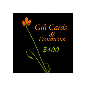 Long stemmed bright orange wind poppy wildflower against a black background with the words Gift cards and donations. $100