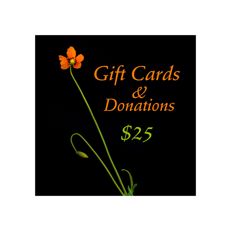 Long stemmed bright orange wind poppy wildflower against a black background with the words Gift cards and donations. $25