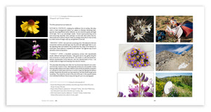 Deluxe Limited Edition Book with Archival Print of Super Bloom Landscape