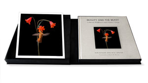 Deluxe Limited Edition Book with Archival Print of Hummingbird