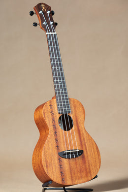 aNueNue PAS2 Papa All Solid Mahogany Concert Ukulele
