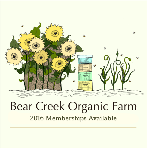Bear Creek Loyalty Program 2016 - Details Inside!