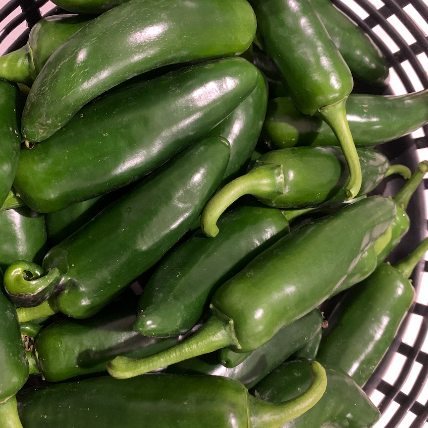 PEPPER - JALAPENO - EACH