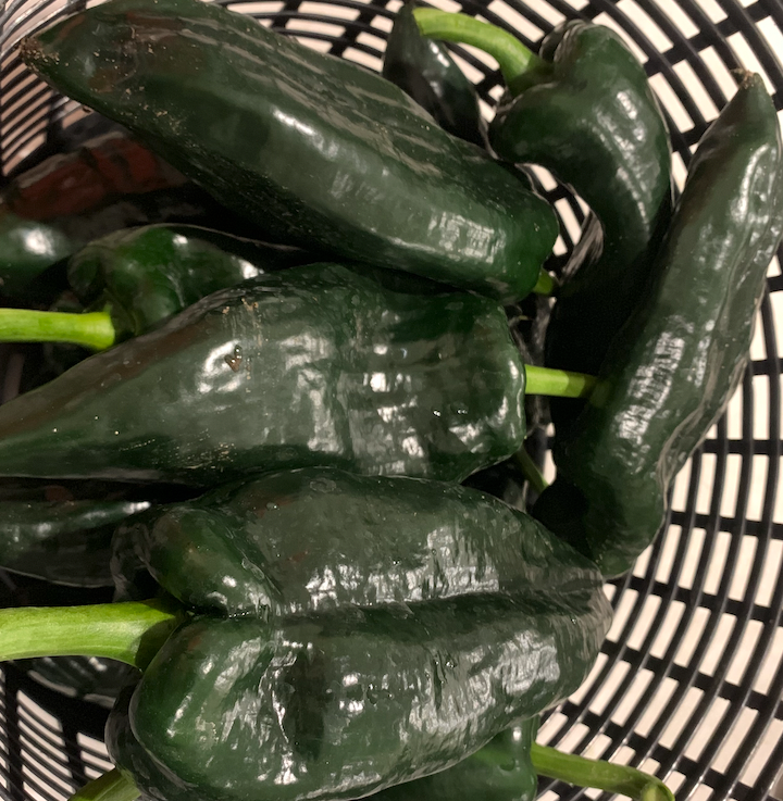Poblano Pepper - Each