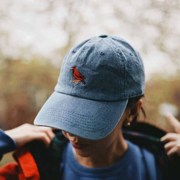 Cardinal Dad Hat - Light Denim