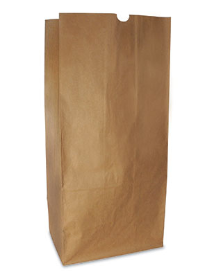 "16"" x 12"" x 35"" Unprinted Biodegradable Lawn and Leaf Kraft Paper Bags - 2 ply (50 lb.)"