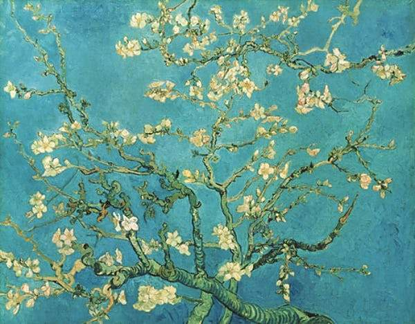 Almond Blossom, 1890 Smith & Co Galleries - Strivezy