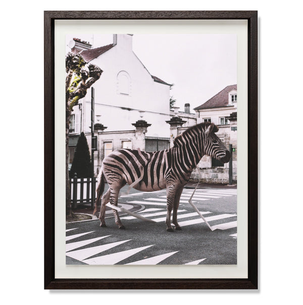 "Zebra Crossing Smith & Co Galleries 18"" x 24"" Modern Wood 5mm Luxe Floated - Strivezy"