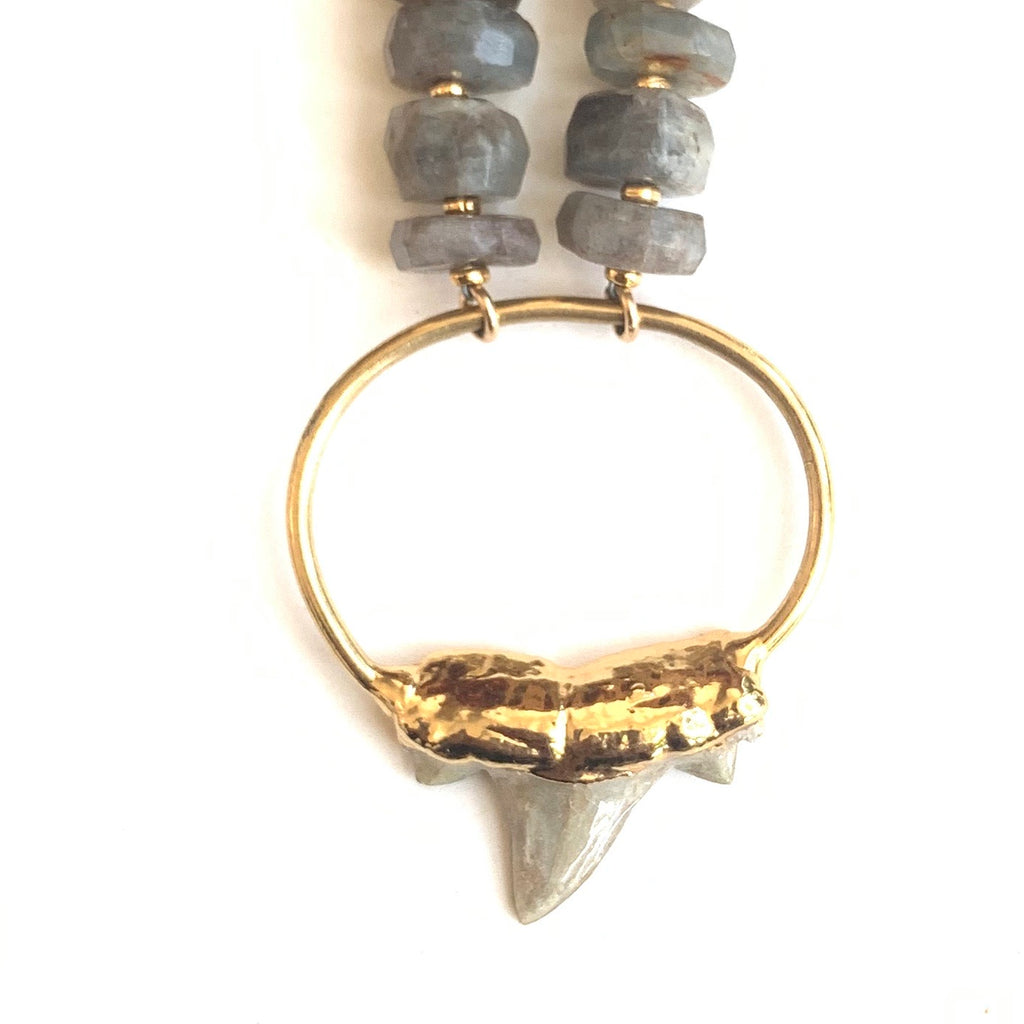 Fossilized Shark Tooth + Raw Grey Kyanite Stone Necklace