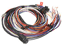 M190 Basic Harness, 10' Unterminated