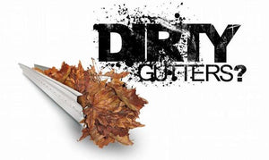 It's That Time of Year For Gutter Cleaning