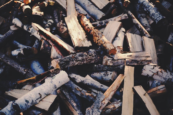 types of firewood wood to burn