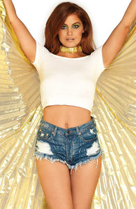 Gold 360 degree Isis wings