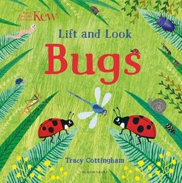 Lift and Look Bugs cover