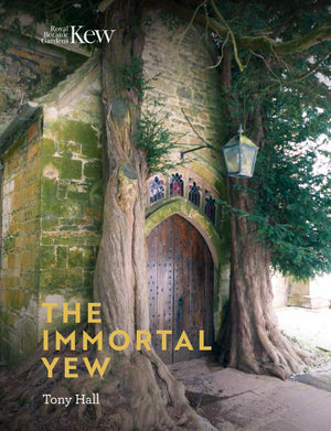 The Immortal Yew Book