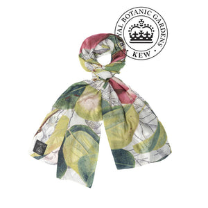 Apples and pears print scarf