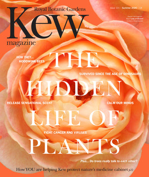 Kew Magazine cover