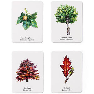 Match A Leaf - Memory Game