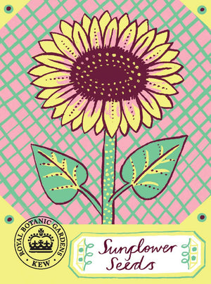 Alice Pattullo Kew Sunflower Seeds Packet