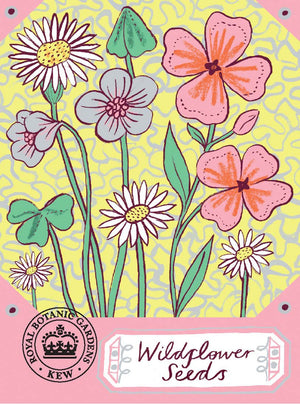Alice Pattullo Kew Wildflower Seeds Packet