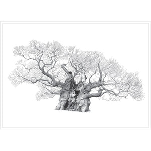 Mark Frith Bowthorpe Oak Print - Extra Large