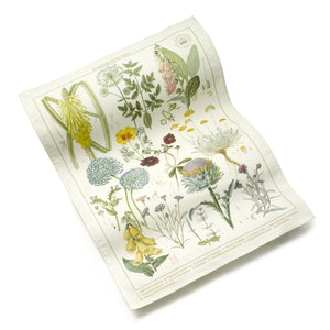 Cotton Tea Towel with Floral Broad Walk Borders Pattern