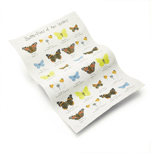 Butterflies of Kew Gardens Cotton Tea Towel with butterfly pattern.