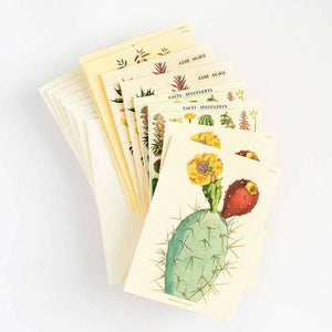 Set of 8 Assorted Cacti & Succulent Notecards
