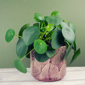 Medium Leaf Pot, Berry
