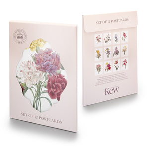 Pack of 12 Kew floral notecards