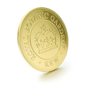 Large gold chocolate coin