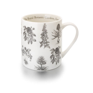 Kew Botanical Illustrations Mug