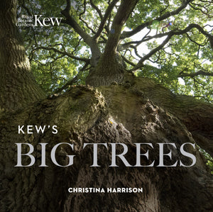 Kew's Big Trees 2nd Edition Book Cover