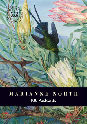 Marianne North 100 Postcards Box Set