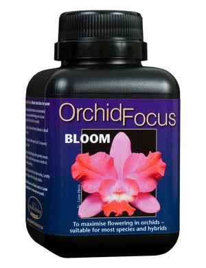 Orchid Focus BLOOM 300ml Bottle