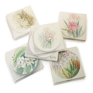 Set of 10 Orchid Notecards