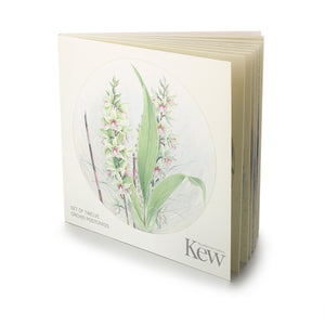 Orchid Postcard Book