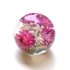 Large pink helichrysum paperweight